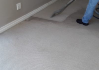Carpet Cleaning Visible Difference